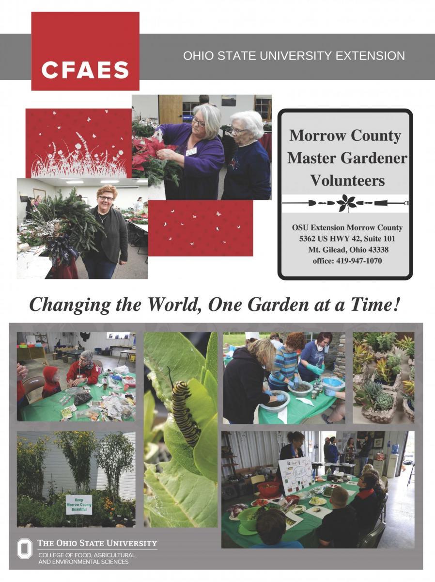 Master gardener poster